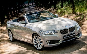 Картинка бмв, BMW, кабриолет, Cabrio, Luxury, 2015, F23, ZA-spec, 228i