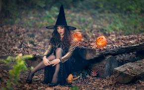 Картинка тыквы, Halloween, ведьма, колдунья