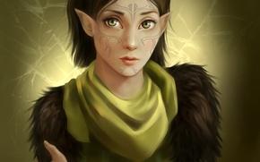 Обои Dragon Age 2, арт, маг, долийка, девушка, эльфийка, тату, Merrill