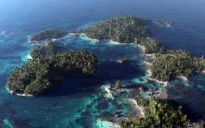 Картинка море, острова, деревья, пальмы, океан, арт, вид сверху, риф, Klontak