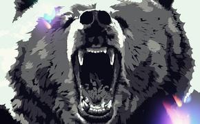 Картинка животные, медведь, арт