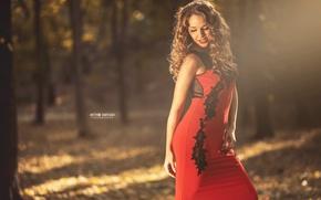 Картинка осень, солнце, радость, улыбка, красотка, photographer, личико, Артём Барташ