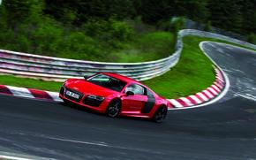 Картинка Audi, Деревья, Поворот, Трасса, V10, E-Tron