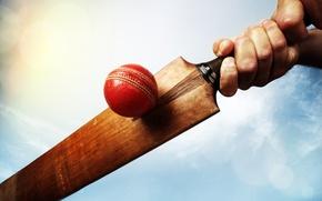 Обои player, red, ball, cricket