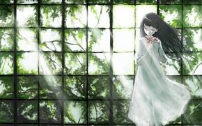 Картинка свет, цветы, ветки, листва, окно, Девочка, белое платье, закрытые глаза