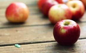 Картинка макро, стол, обои, яблоки, картинки, фрукты, WALLPAPERS