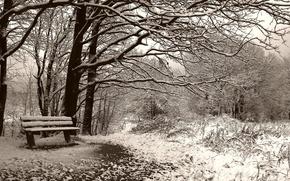 Картинка скамейка, Зима, сепия