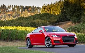 Обои 2015, TFSI, Coupe, quattro, US-spec, ауди, Audi