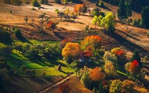 Картинка осень, лес, деревья, горы, природа, хатка