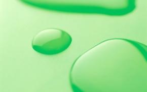 Обои зеленый, капли