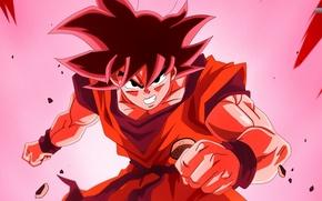 Картинка anime, manga, Son Goku, Dragon Ball Z, Super Saiyan God