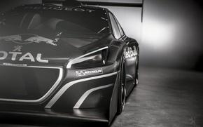 Картинка спорт, Пежо, автоспорт, T16, Pikes Peak, Peugeot 208