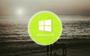 Картинка windows, logo, windows 10