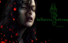 Картинка cinema, fire, flame, snake, woman, movie, brunette, evil, Helena Bonham Carter, Bellatrix Lestrange, Lord Voldemort, …