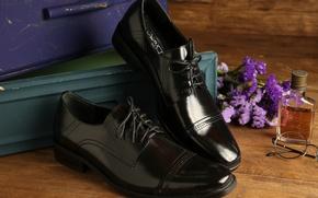 Картинка обувь, очки, туфли, коробки, лоск