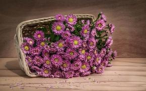 Картинка корзина, Fine Art, Pink flowers
