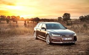 Картинка Audi, ауди, TDI, Allroad, quattro, AU-spec, 2015