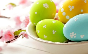 Картинка цветы, яйца, весна, тарелка, пасха