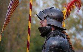 Картинка металл, доспехи, перья, шлем, рыцарь