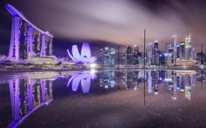 Картинка ночь, город, Singapore