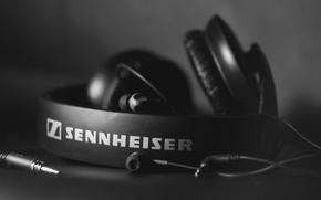 Картинка наушники, черно белое, Hi-Tech, sennheiser, HD 205
