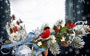 Картинка зима, снежинки, птица, ветка, Новый год, bird, New Year, snowflakes