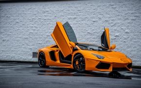 Картинка Lamborghini, Ламборджини, Оранжевый, Orange, Двери, Суперкар, LP700-4, Aventador, Авентадор, Supercar