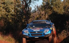 Картинка заросли, Volkswagen, Touareg Race