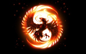 Обои феникс, крылья, птица, огонь