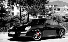 Картинка Черный, Деревья, 911, Porsche, Серость, Белестит, Черно-Белое изображение