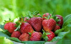 Обои фон, клубника, ягода
