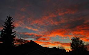 Картинка крыша, небо, облака, деревья, закат, дома, силуэт