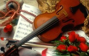 Картинка Роза, Скрипка, Ноты