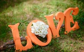 Картинка любовь, цветы, праздник, букет, love, flowers, holiday, каллы, bouquet-Calla
