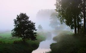 Картинка туман, утро, деревья, река, природа