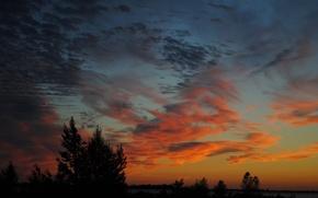 Картинка небо, облака, деревья, закат, горизонт, силуэт