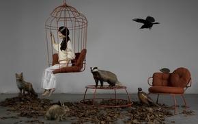 Обои фазан, животные, клетка, ёжик, брюнетка, ворона, девушка, звери, заяц, кресло, лиса, стол.листья, чучела, барсук