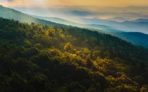 Картинка осень, лес, горы, природа, рассвет, панорамма