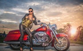 Обои красный, байк, мотоцикл, Harley Davidson, харлей, рок, девушка, тату