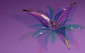 Картинка цветок, стекло, лепестки
