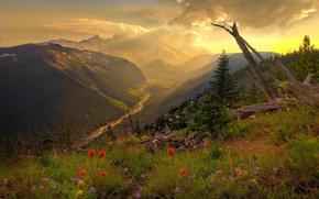 Обои трава, река, облака, Горы