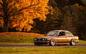 Картинка осень, свет, дерево, листва, BMW, e30, 325si