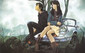 Картинка машина, трава, девушка, облака, природа, дерево, парень, neon genesis evangelion, длинные волосы, сидят, nge, katsuragi …