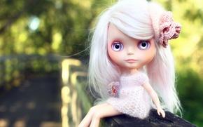 Обои глаза, обои, одежда, волосы, кукла, доска, заколка, Blythe, брошь