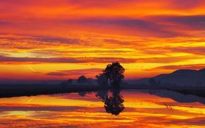 Картинка небо, облака, деревья, закат, горы, озеро, зарево
