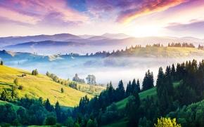 Картинка горы, туман, Украина, панорама, домик, холмы, солнце, Карпаты, леса