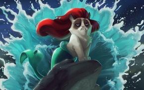Картинка кот, мультфильм, русалочка
