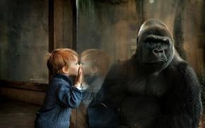 Картинка ситуация, мальчик, обезьяна