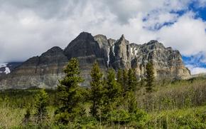 Картинка деревья, горы, скалы, США, Glacier