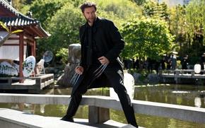 Картинка Wolverine, Hugh Jackman, Logan, Хью Джекман, The Wolverine, Росомаха: Бессмертный